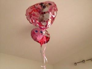 14B26 Balloons